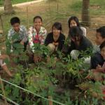 Para la juventud ambiente, Battambang-Cambodia. Foto de: Sch. Mark Lopez,SJ