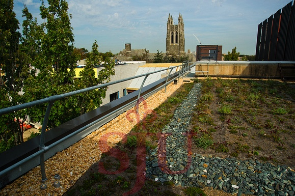 Storm water strategies for improved land management and green roofs at Saint Joseph's University, USA