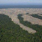 Deforestacion en la isla de Sumatra, Indonesia. Foto de: my.opera.com