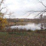 Practicando lo que predicas: Rehabilitación del Lago en la Universidad Loyola y el centro de Ecología (LUREC) en Woodstock, Illinois, USA.