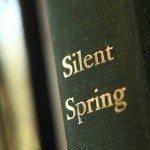 La Primavera silenciosa por Rachel Carson fue publicada hace 50 años en el septiembre de 1962. Foto de: Sterling College