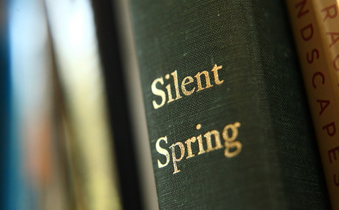 Silent spring to silent transformation: Six reasons for our environmental concern