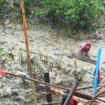 Recogiendo leña en la estación de lluvias, Myanmar. Foto de: FAO