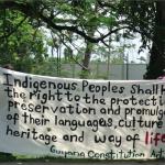 Foto des: apaguyana.org