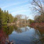 Una Fe que ama la tierra (una foto del río Speed en Ontario, Canadá tomada por Jim Profit en Noviembre de 2012). Foto de: jamesprofit.wordpress.com