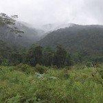 Un paisaje de las tierras altas en el norte de Mindanao, Filipinas. Foto de: P Walpole