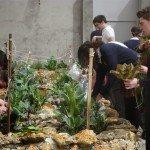 Cultivo de hortalizas en el patio escolar.