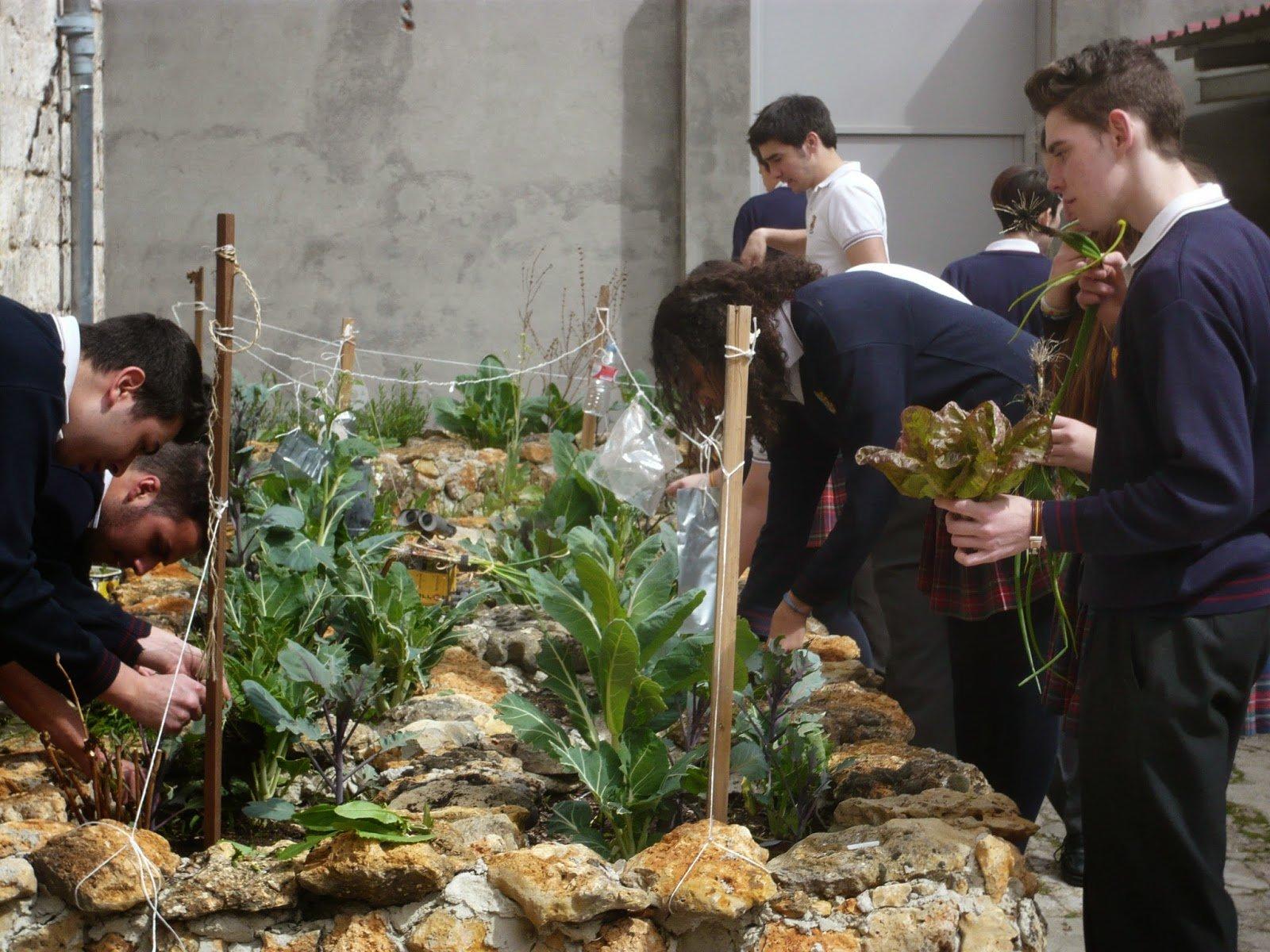 Sanjo's Green 2.0: Un partenariat avec la nature