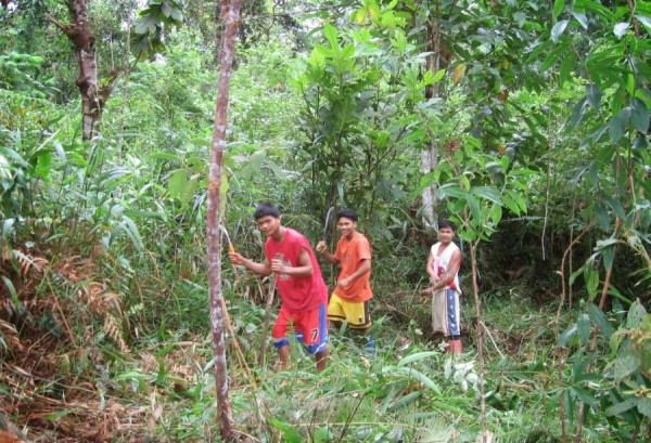 La juventud de Pulangi superior recupera los bosques: Actualización del programa Vuelos por Bosques