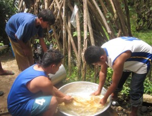 Local abaca enterprises can be viable livelihood options for upland communities but need various levels of support. Photo credits: ESSC
