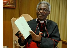 2015_06_18_Cardinal Peter Turkson photo