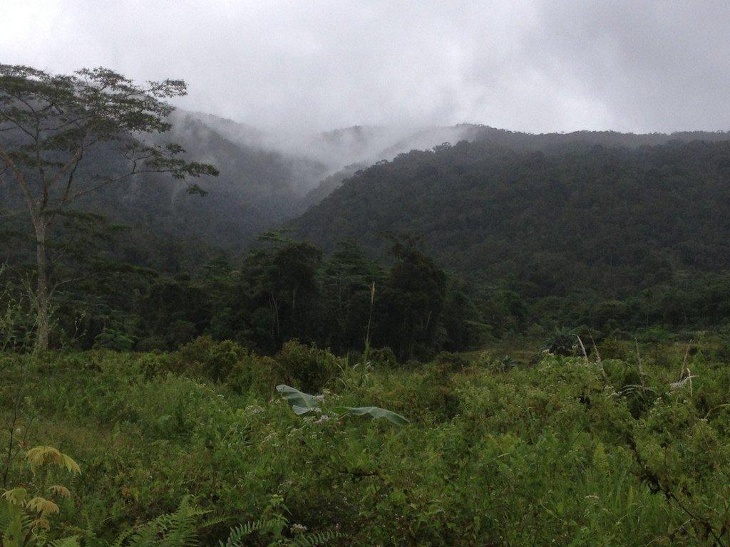 Tierras altas en Mindanao, Filipinas. Foto de: P Walpole