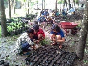 Estudiantes de biología preparan los materiales de siembra. Foto de: D Karnedi