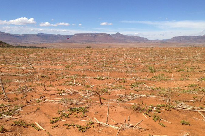 Dried-up fields in Lesotho, in southern Africa due to the El Niño-induced drought in 2015 to 2016, one of the strongest ever recorded and resulting in serious food and water crisis in the region. Photo credit: FAO
