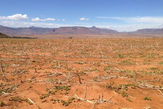 Les champs secs au Lesotho, en Afrique Australe, une sècheresse provoquée par El Niño en 2015 et 2016, une des plus fortes sécheresses que la région ait connues et qui a entraîné des crises alimentaire et pénurie d'eau graves. Crédit photo: FAO