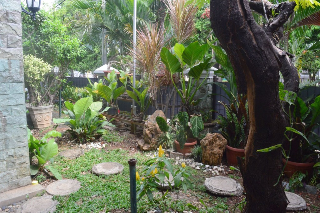 The organized garden at Puna Unit
