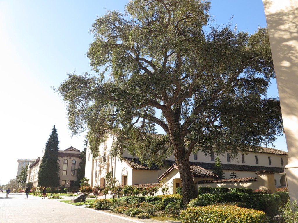 Mission Santa Clara de Asís is a historic church on the campus of Santa Clara University.