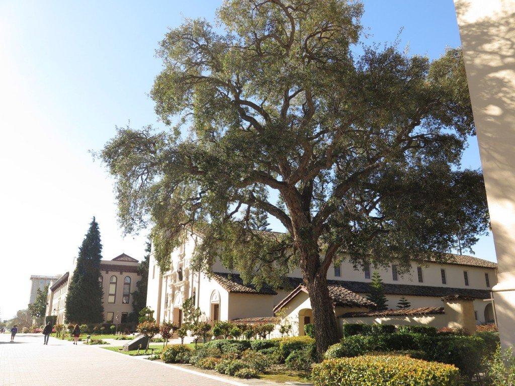 Mission Santa Clara de Asís is a historic church on the campus of Santa Clara University.