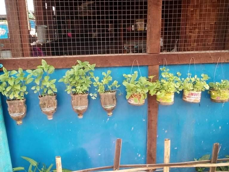 Finding hope in God's creation: Growing vegetable gardens in IDP camps