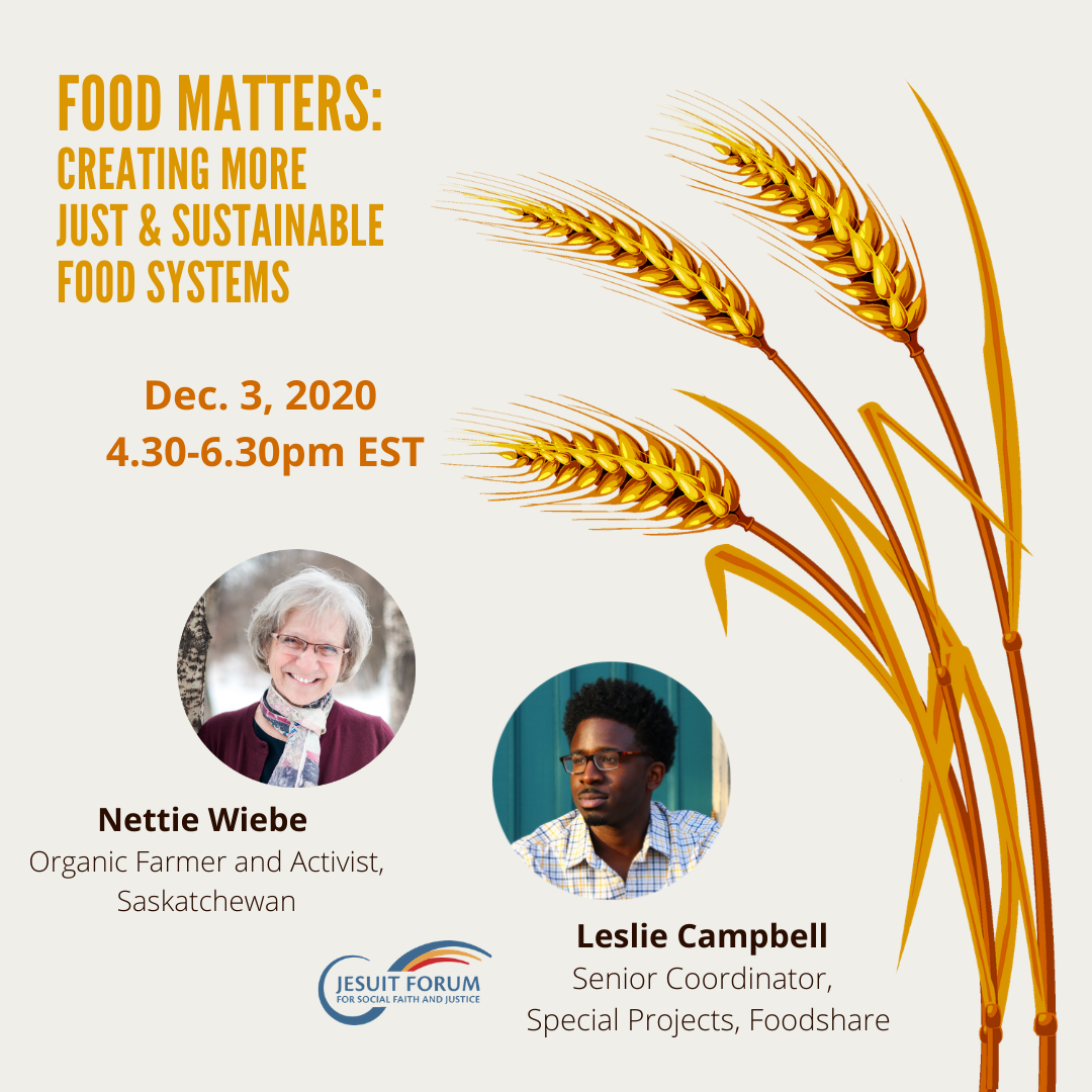 Creating more just and sustainable food systems