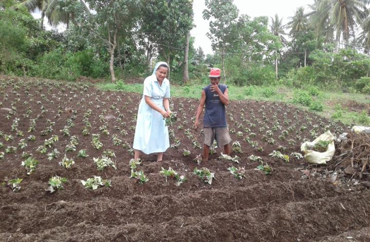 Organic gardening as a work of heart